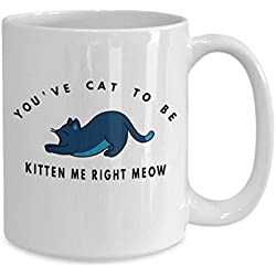 PMIHWH0023 Youve cat to be kitten me right meow coffee mug funny gift idea for kitty animal lover crazy cat lady mommy
