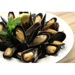 Fresh Maine Blue Mussels - 12 pounds