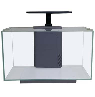 JBJ-Rimless-Desktop-8-Gallon-with-LED-&-Filter
