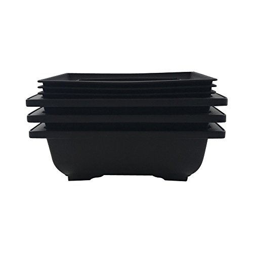 Bonsai Tree Pot 6 Inch Bonsai Pots with Trays - 3 Pack From ()