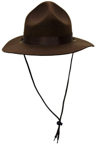 Ranger Or Canadian Mountie Hat,Brown,One Size fits most (Smokey The Bear Costume)