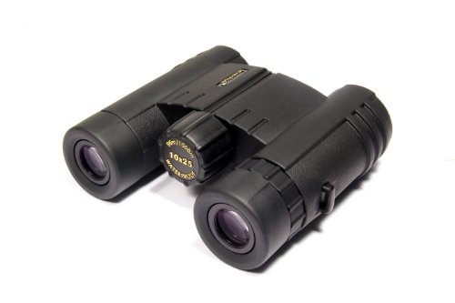 Levenhuk 49140 Levenhuk 49140 Monaco 10x25 Binoculars Roof prism 10x fogproof waterproof with accessory kit (Dark gray)