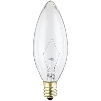Westinghouse 4027 60 watt b10 decorative ceiling fan bulb westinghouse 4027 60 watt b10 decorative ceiling fan bulb candelabra base clear aloadofball Choice Image