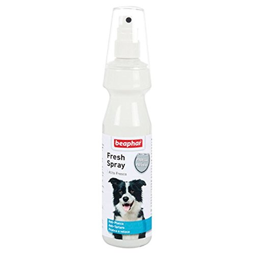 Dental Care Fresh Spray Beaphar