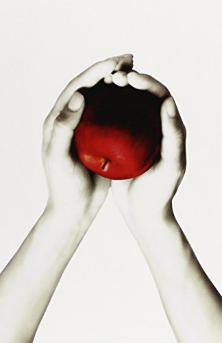The Twilight Saga White Collection by Stephenie Meyer (Image #6)