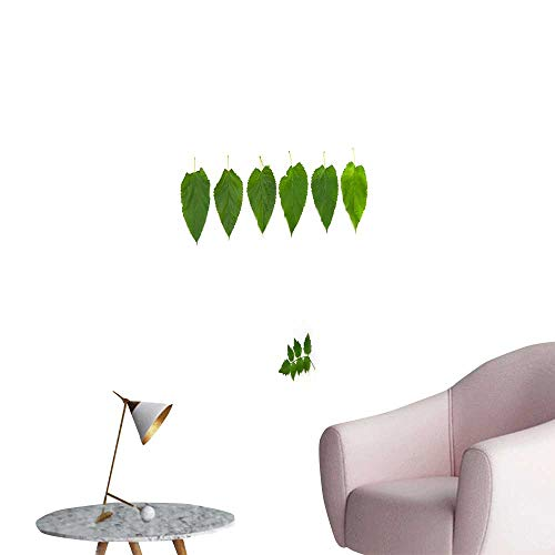 - SeptSonne Wall Decals Mulberry Leaf Background Environmental Protection Vinyl,12