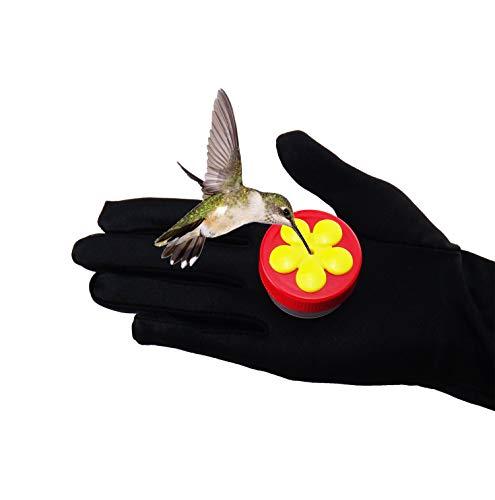 - ARTPET Hummingbird Feeder, Mini, Handheld - Different Pack Available ((1PACK)= 1 Feeder and 1 Brush)