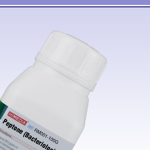 HiMedia RM001-100G Peptone, Bacteriological, 100 g by HiMedia