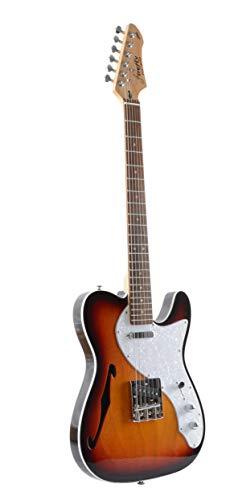 Firefly FFTH S Hollow body Guitar Sunburst