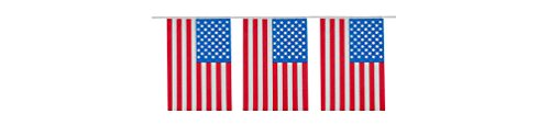 Patriotic 4th of July Flag Banners - Decorations for 4th of July with American Flag, Stars and Stripes Banners for Independence Day - 2 Pack (States Flag United Plastic)