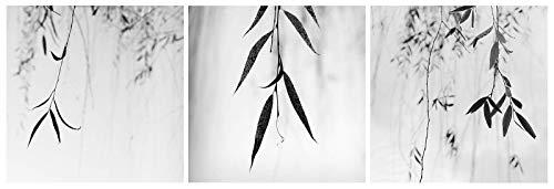 black and white minimalist photography, print set of 3, photography