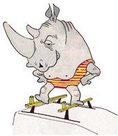 Rhino Heavy Duty Van Roof Bars 2 Bar System