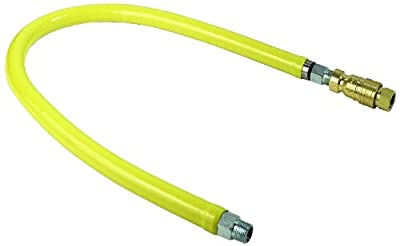 T&S Brass HG-4E-36 Gas Hose with Quick Disconnect, 1-Inch Npt and 36-Inch Long