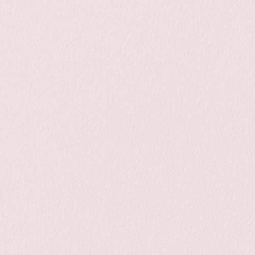 サンゲツ リアテック 粘着フィルム カッティング用シート DIY 約3年耐候性 屋外OK カラー 単色 TA4781 【長さ1m×注文数】 巾1220mm ピンク系