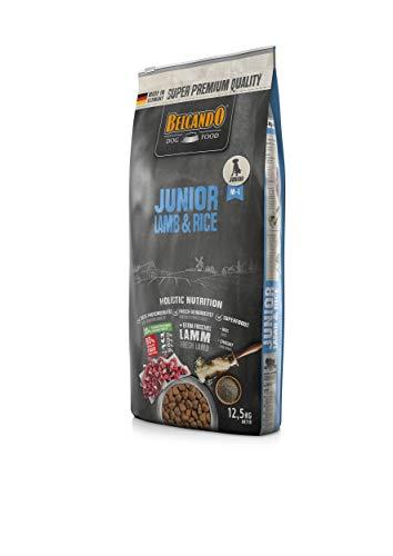 Belcando Junior Lamb & Rice [12,5 kg] Hundefutter | Trockenfutter für Junghunde | Alleinfuttermittel für Junghunde ab 4…