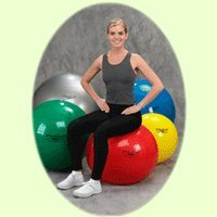(Thera-Band Exercise Ball Standard Silver - 85 cm)
