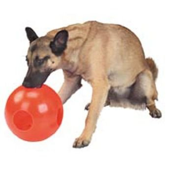 PAW-zzle Ball – 10 Inch, My Pet Supplies