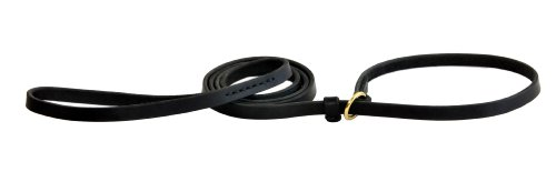 (Dean and Tyler 2-in-1 DT Slip Leash, Black 5-Feet by 3/4-Inch Width With Solid Brass Hardware.)