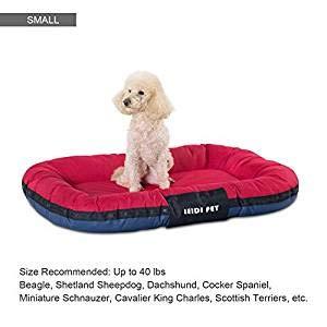Amazon.com: CLOVLY PAWS - Cama para perro, tela Oxford 600D ...