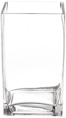 WGV Clear Rectangle Block Glass Vase, 3 by 4 by 7-Inch