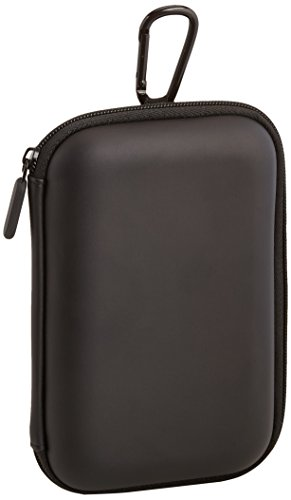 (Nupro Travel Case for Fire TV Stick)