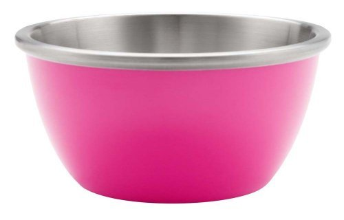 Insulated 5 Ounce Bowl - Zak Designs Gemini Insulated 5-Ounce Individual Bowl, Magenta Home Supply Maintenance Store
