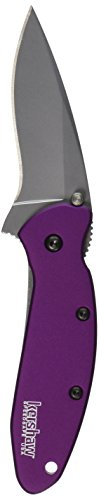 Kershaw-1620PUR-Scallion-Folding-Knife-Purple-with-SpeedSafe