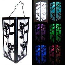 Outdoor Garden Hummingbird Lantern Color Changing/White Solar Light