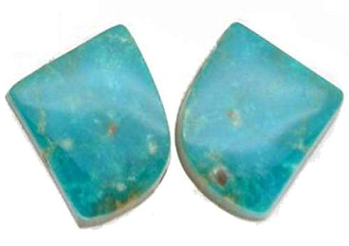 Mountain Turquoise Nugget - Turquoise Mountain Turquoise Freeform Matching Earring Cabochon Pair D, 17x20mm