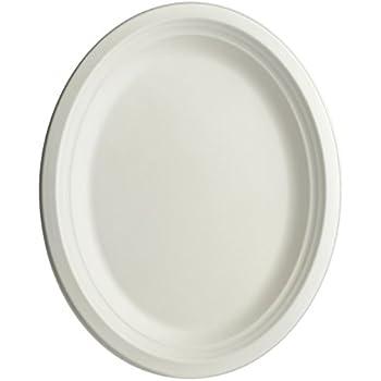 Brheez Oval Plates 100% Natural Sugarcane Biodegradable Compostable Bagasse, Eco-friendly paper alternative - Oval Serving Platters 10
