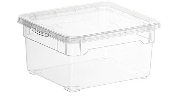 Rotho 2 litros polipropileno cajas de almacenaje con tapa, juego de 10, translúcido: Amazon.es: Hogar
