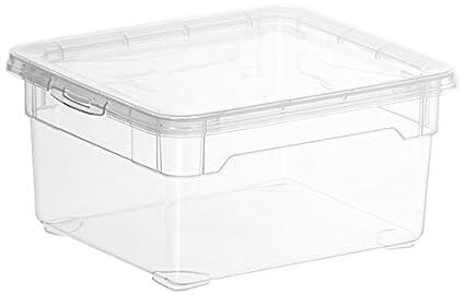 Rotho 2 litros polipropileno cajas de almacenaje con tapa, juego de 10, translúcido