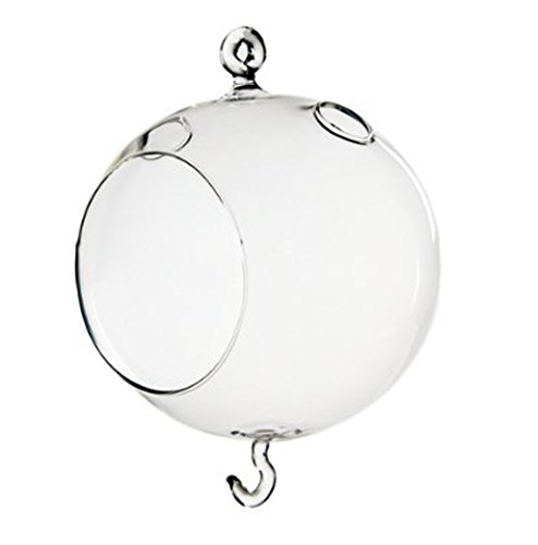 Fashionclubs Christmas Wedding Hanging Glass Orb Terrarium Vase,Candle Holder With Double Hook