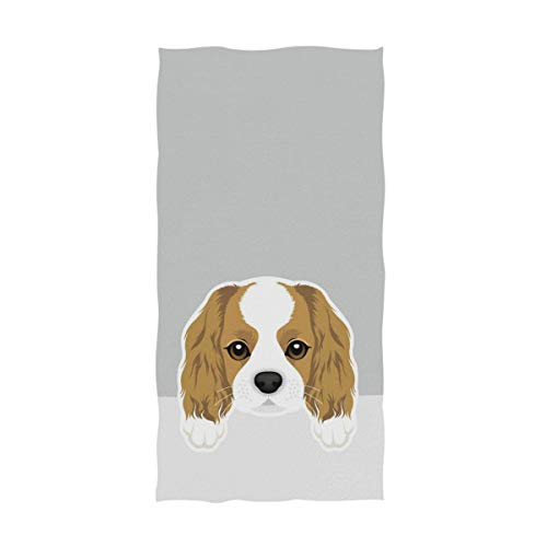 Naanle Cute Cartoon Cavalier King Charles Spaniel Dog Print Soft Absorbent Guest Hand Towels for Bathroom, Hotel, Gym and Spa (16 x 30 Inches,Gray)