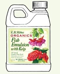 eb-stone-fish-emulsion-with-kelp-quart-size