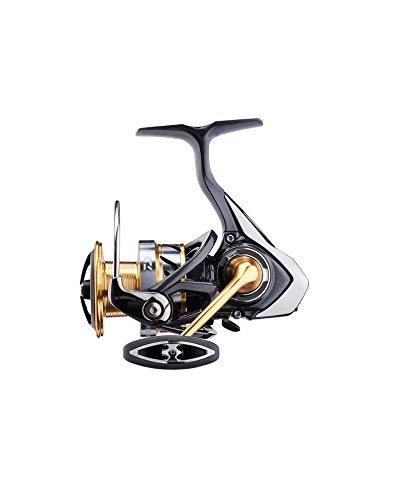 90dbe2ea73c Daiwa Exceler LT 5.3:1 Left/Right Hand Spinning Fishing Reel - EXLT2500D