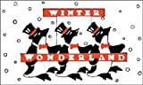 3'x5′ Nylon Winterland Penguins Flag Made in the USA by Flags Poles And More For Sale