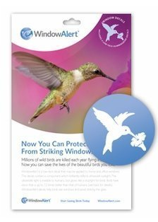 Amazoncom Window Alert Hummingbird Decals By Birds Choice - Window alert decals amazon