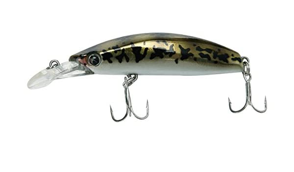 Seaspin Buginu 55 S GBN - Señuelo de Pesca: Amazon.es: Deportes y ...