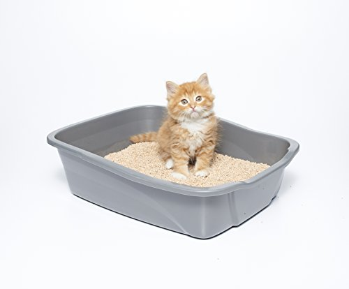 Image of sWheat Scoop Premium Cat Litter, 36 lb