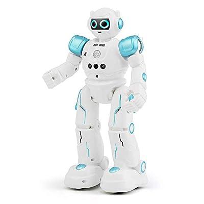 FLYZOE Smart Robot Gesture Sensing Smart Touch Control Figure Cady Wike Robot