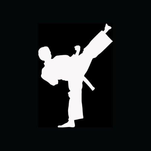 Karate Vinyl Decal Window sticker Car RV Hunting Outdoor Sports Vinyl Decal