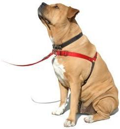 SENSE-ation No-Pull Dog Harness - Large/Wide (Black) by Sense ...