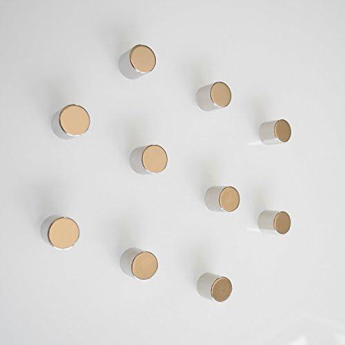 10 Neodym Magnete Zylinder für Glas Magnettafel/Magnetboard/Magnetwand/Memoboard