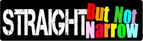 Bumper Sticker for Cars, Trucks - Straight But Not Narrow - Gay Friend and Supporter. - LGBTQ Professional Vinyl Decal | Made in USA - 3