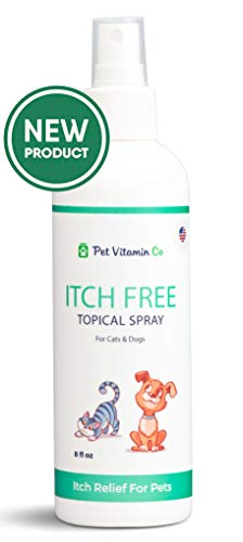 Pet Vitamin Co Itch-Free Hot Spot Relief Spray ✅ Soothing Alcohol Free Dog Itching Treatment ✅ Antibacterial Healing Anti Itch Dry Skin Relief for Dogs ✅ cGMP - Made in USA - 8fl oz (Best Anti Itch Remedy For Bug Bites)