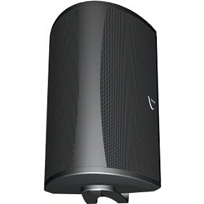 Definitive Technology AW 5500 Outdoor Speaker (Single, Black) by Definitive Technology