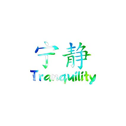 Amazon Chinese Symbols Tranquility Vinyl Decal Sticker 575