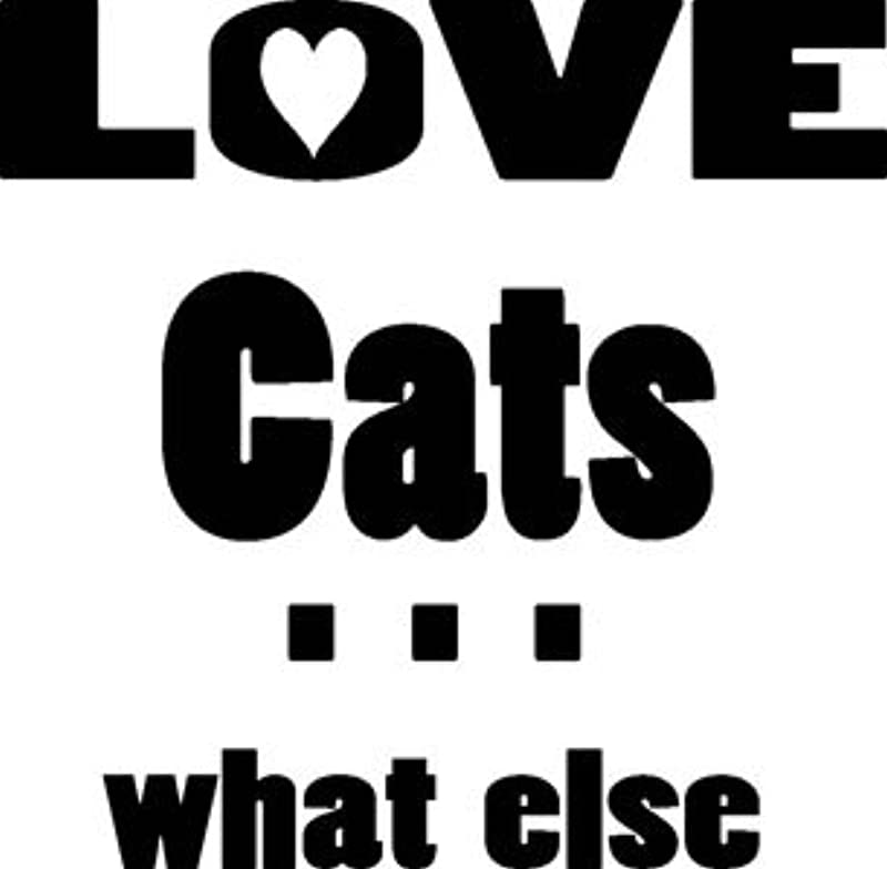 Mister Merchandise męski sweter Men czapki Love Cats – What Else Sweater Pulli nadruk wykonany: Odzież
