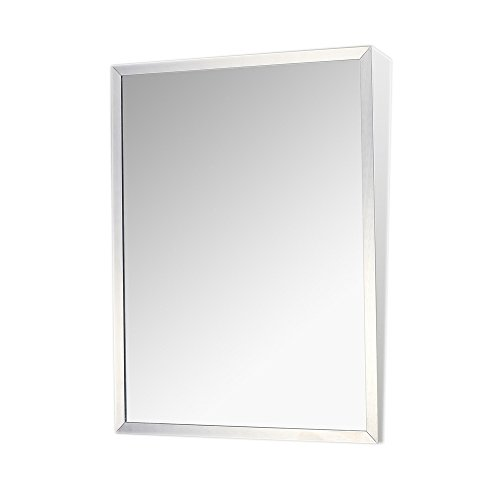 Fixed Tilt Mirror, Stainless Steel, 30
